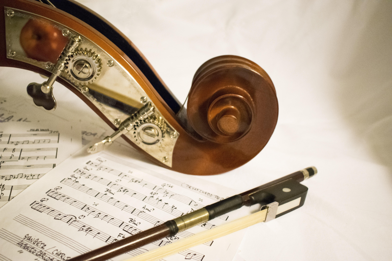 Nevjerojatni učinci glazbe na prodaju